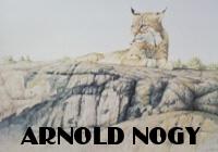 Afternoon Rest by Arnold Nogy at ArtFINDca link
