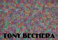 Entrophy by Tony Bechera at ArtFINDca link