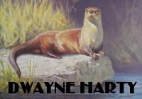 River Otter by Dwayne Harty at ArtFINDca link